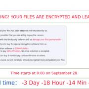 資安業者Sophos揭露勒索軟體Atom Silo的攻擊,一旦電腦檔案遭到加密,就會顯示如圖中的勒索訊息,宣稱當事人只能向他們購買解密金鑰來換回檔案,若是超過1週而不付款,攻擊者將會公布檔案。